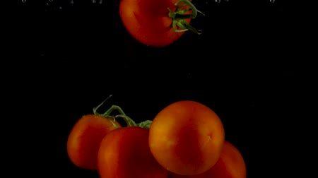 Red tomatoes fall and float in water, black background. Slow motion