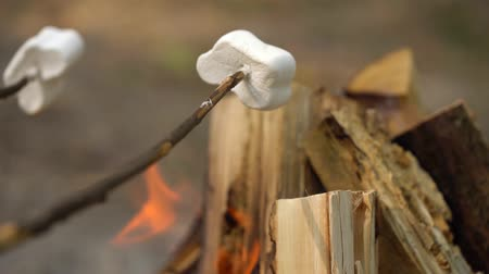 fireside : Marshmallow are frying, roasting on the sticks above the bonfire, outdoors Stock Footage