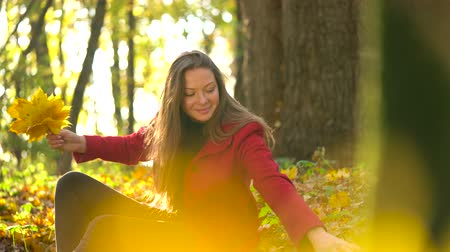 dżungla : Beautiful girl sits in the autumn forest and collects a bouquet of yellow maple leaves
