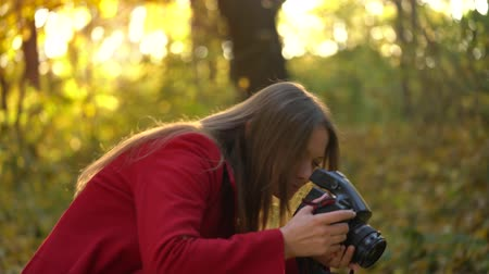 dżungla : Beautiful girl with a camera walks through the autumn forest and takes pictures. Weekend outside the city Wideo