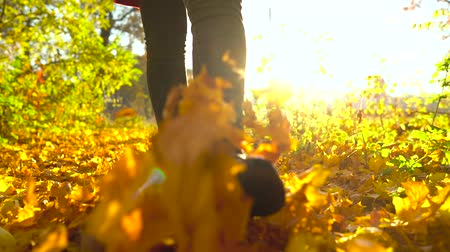 cipő : Legs of a woman in black boots walking through the autumn forest, yellow leaves fly around. Slow motion