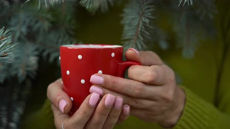 szüret : Woman hands holding a cozy red mug against the background of pine branches
