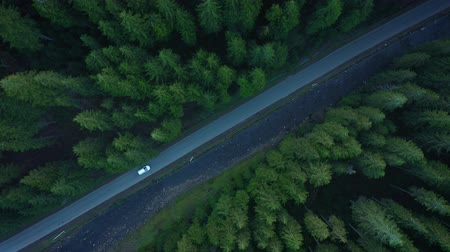 松 : Aerial view of car riding on the road in the coniferous forest among the mountains