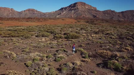 pedras : Aerial view of active hiker woman hiking on Teide National Park. Caucasian young woman with backpack on Tenerife, Canary Islands, Spain