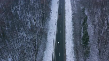 gałąź : Aerial view of traffic on the road passing through the winter forest in winter Wideo