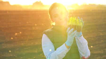 folha : Female farmer examines a sample of seedlings before planting it in the soil
