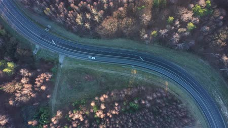 trilhas : View from the height of the car driving on the road surrounded by autumn forest
