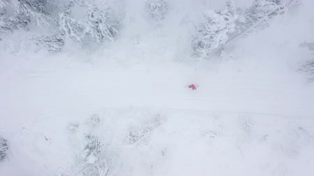 nástup do letadla : Top view of a man who snowboarding down a mountainside among snowy trees