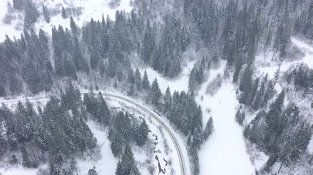 air vehicle : Aerial view of a car driving along a road surrounded by winter forest Stock Footage