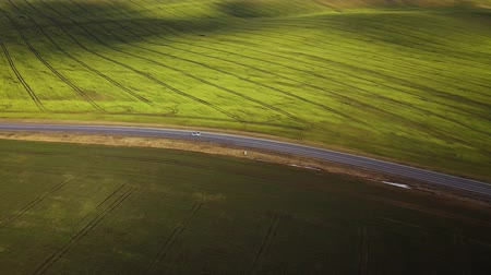 natura : Top view of a car driving along a rural road between two fields