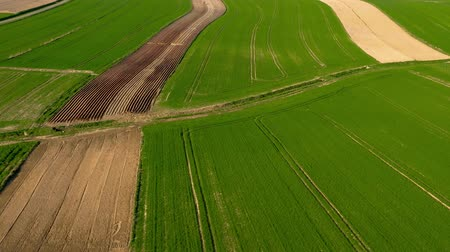 gleba : Aerial view of green fields and unplanted areas. A tractor is visible in the distance. Wideo