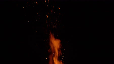 noc : Burning bonfire on a black background surrounded by branches. Close up Wideo