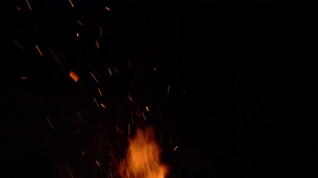 fireside : Burning bonfire on a black background surrounded by branches. Close up Stock Footage