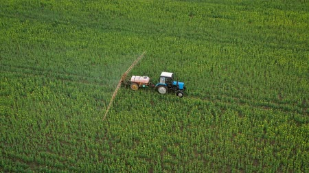 földműves : Aerial view of tractor treats agricultural plants on the field