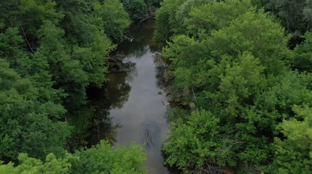 dżungla : Aerial view of the beautiful landscape - the river flows among the green deciduous forest