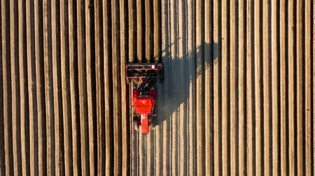 rolník : Aerial view of tractor performs seeding on the field