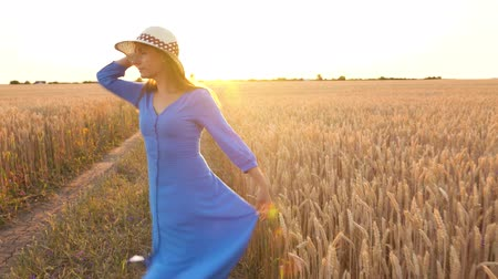 felder : Beautiful woman in a blue dress and hat is spinning in the middle of a wheat field at sunset. Freedom concept. Wheat field in sunset Videos