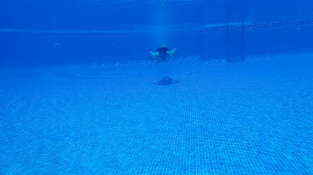 spat : Underwater shooting as a man dives into the pool and swims under the water. Slow motion Stockvideo