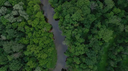 sabah : Aerial view of the beautiful landscape - the river flows among the green deciduous forest