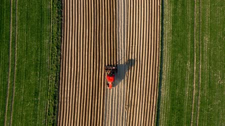 földműves : Aerial view of tractor performs seeding on the field