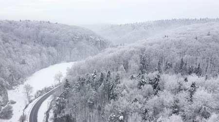 sprookje : Aerial view of a fairy winter landscape - a car rides along a road in a forest covered with snow in winter Stockvideo
