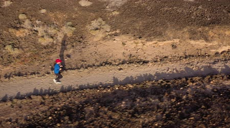 pedras : Aerial view of woman runnning along the nature reserve at sunrise. Healthy active lifestyle Vídeos