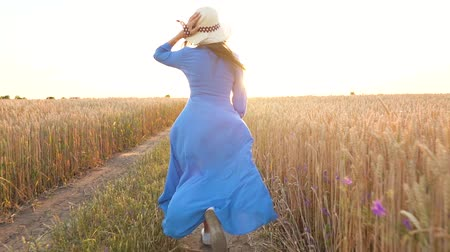 aydınlatmalı : Beautiful woman in a blue dress and hat runs through a wheat field at sunset. Freedom concept. Wheat field in sunset Stok Video