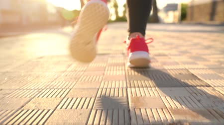 folha : Close up of woman tying shoe laces and running along the palm avenue at sunset. Back view Stock Footage