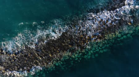 fuzileiros navais : Top view of the surface of the Atlantic Ocean near the coast - waves roll through the breakwater. Coast of the island of Tenerife