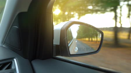 roadtrip : View from the rearview mirror as car drives through the road surrounded by trees at sunset