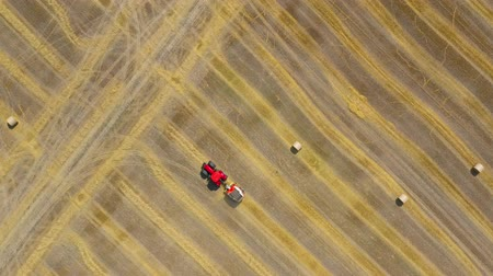 work at height : Aerial view of haymaking processed into round bales. Red tractor works in the field Stock Footage