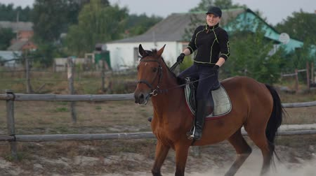 salto ostacoli : Horsewoman riding on brown horse and jumping the fence in sandy parkour riding arena. Competitive rider training jumping over obstacles in manege