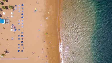 altura : View from the height of the golden sand, palm trees, sun loungers, unrecognizable people on the beach Las Teresitas, Tenerife, Canaries, Spain Stock Footage