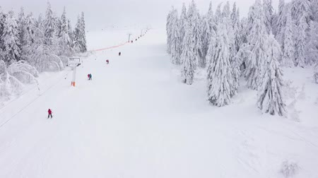 narciarz : Aerial view of ski slope - a ski lift lifts skiers and snowboarders to the top of the mountain. Along the sides are fabulous snowy conifers Wideo
