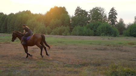 konie : Woman riding horse by gallop at sunset. Horseback riding in slow motion.
