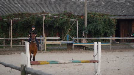 salto ostacoli : Horsewoman riding on brown horse and jumping the fence in sandy parkour riding arena. Competitive rider training jumping over obstacles in manege. Slow motion Filmati Stock