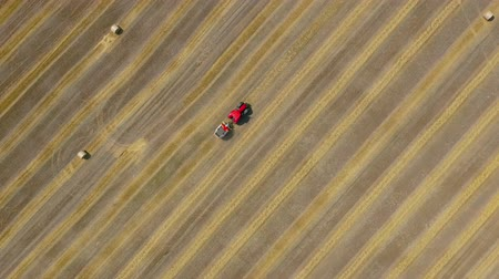 local : Aerial view of haymaking processed into round bales. Red tractor works in the field.