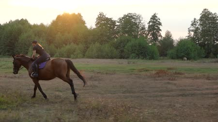 lő : Woman riding horse by gallop at sunset. Horseback riding