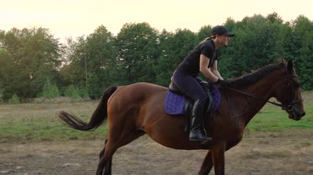 terbiye : Woman riding horse by gallop. Horseback riding in slow motion. Stok Video
