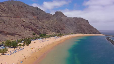 kanarya : View from the height of the golden sand, palm trees, sun loungers, unrecognizable people on the beach Las Teresitas, Tenerife, Canaries, Spain Stok Video