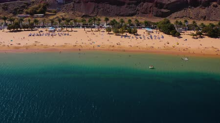 napágy : View from the height of the golden sand, palm trees, sun loungers, unrecognizable people on the beach Las Teresitas, Tenerife, Canaries, Spain Stock mozgókép