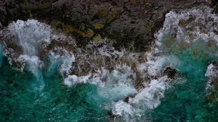 カナリア諸島 : Top view of a deserted coast. Rocky shore of the island of Tenerife. Aerial drone footage of ocean waves reaching shore