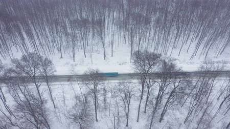vagoneta : Aerial view of traffic on a road surrounded by winter forest in snowfall Archivo de Video