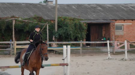 規律 : Horsewoman riding on brown horse and jumping the fence in sandy parkour riding arena. Competitive rider training jumping over obstacles in manege