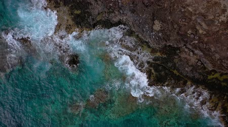 stony : Top view of a deserted coast. Rocky shore of the island of Tenerife. Aerial drone footage of ocean waves reaching shore