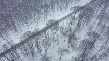 kareta : Aerial view of traffic on a road surrounded by winter forest