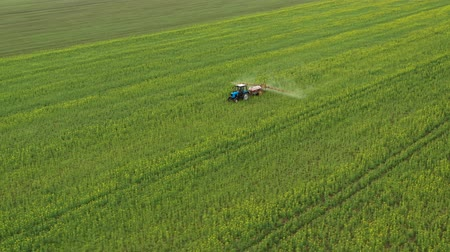 tallo : Aerial view of tractor sprays fertilizer on agricultural plants on the rapeseed field Archivo de Video