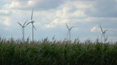 brancos : Eco power. Wind turbines generating electricity. Stock Footage