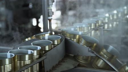 konserve : Plant for the Production of Canned Vegetables. Tin on the Production Line. Steaming Stok Video