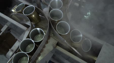 automatizálás : Plant for the Production of Canned Vegetables. Tin on the Production Line. Steaming Stock mozgókép